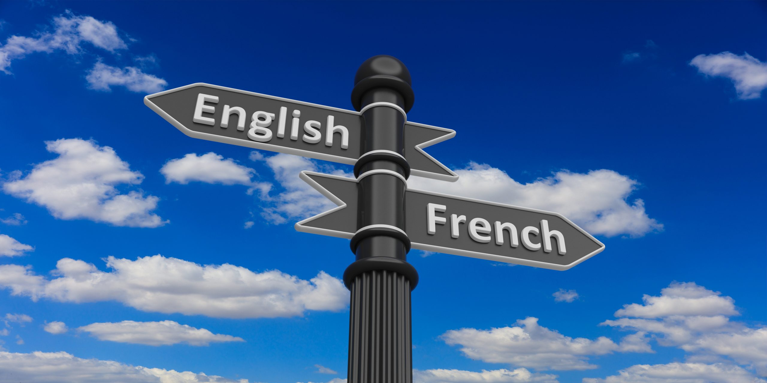 There is a 3d rendering languages choice among English and French on road signs and it is a metaphor for the language barrier faced by the immigrant women which further limits their opportunities in Canada making them more vulnerable to abuse.