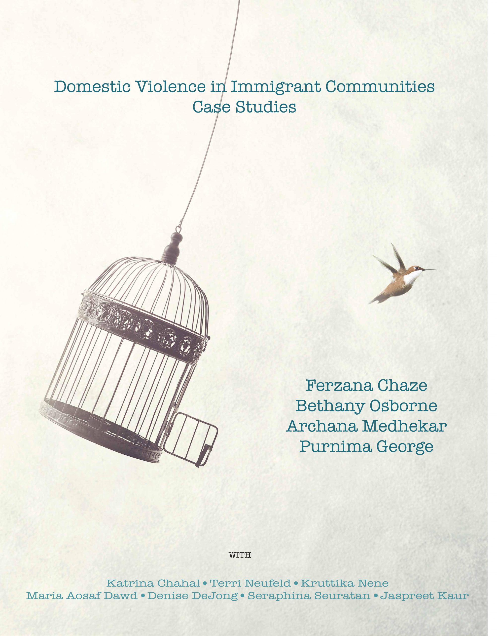 Cover image for Domestic Violence in Immigrant Communities: Case Studies