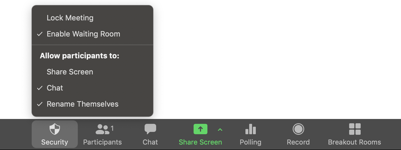 Image of Zoom's bottom menu bar during an active videoconference. Zoom has a number of security and interactivity features that are easily accessibly in the bottom screen of an active videoconference. These include: lock meeting, enable waiting room, Allow participants to (1) Share screen, (2) Chat, and (3) Rename themselves. Other options on the bottom bar include seeing participants, opening the chat, sharing screen, polling, recording the session, and creating breakout rooms.