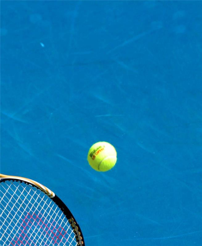 Cover image for The Ball is in Y(Our) Court: Social Change Through and Beyond Sport